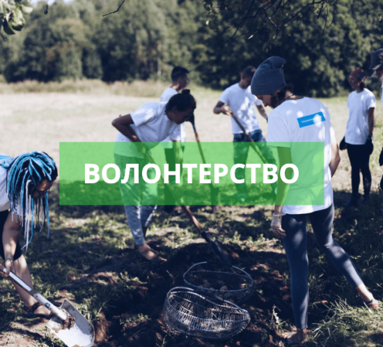волонтерство обложка сайт